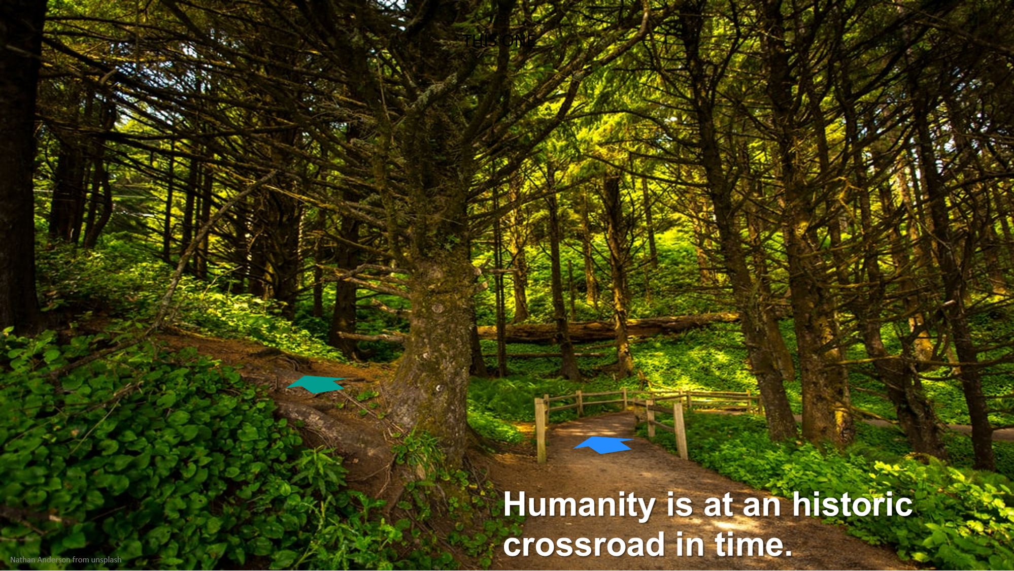 Humanity is at an historic crossroad in time.