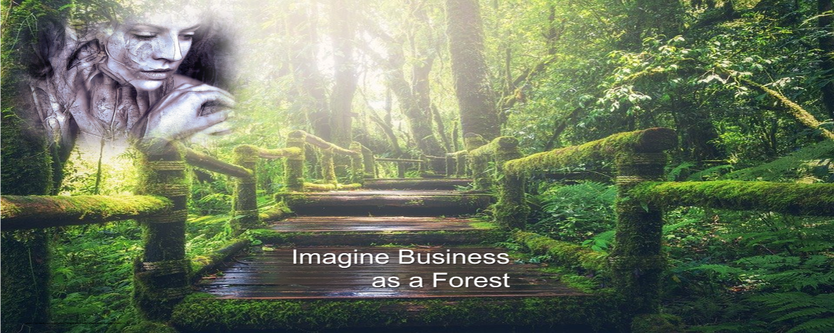 Imagine Business as a Forest