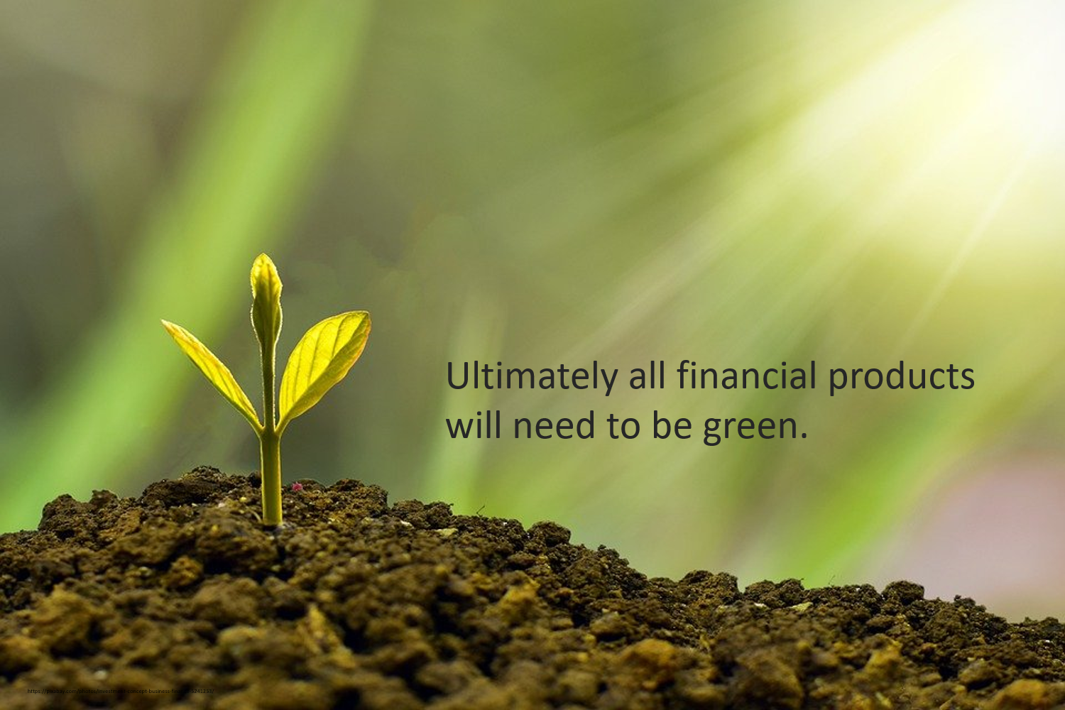 Ultimately all financial products will need to be green.